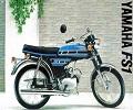 Yamaha FS1 (REEDVALVE MODEL) onderdelen