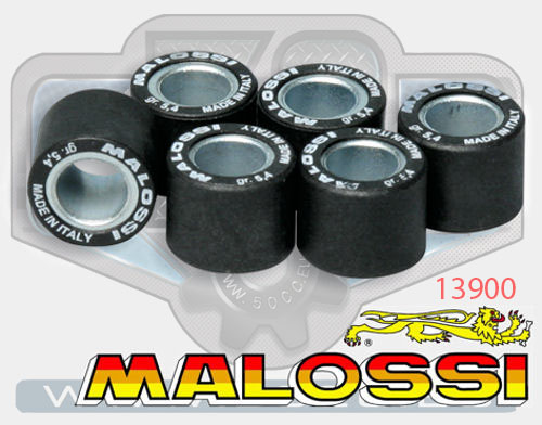 malossi 16x13 variator weights